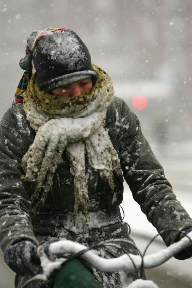 Netherlands「Snow Falls In Amsterdam」:写真・画像(16)[壁紙.com]