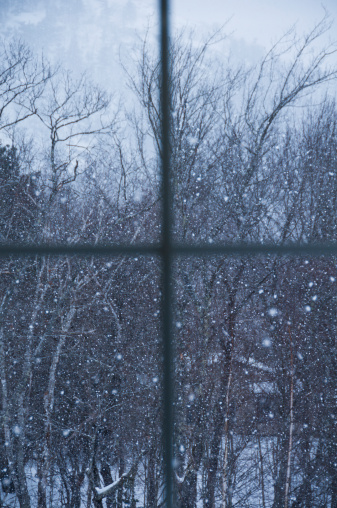 吹雪「USA, Maine, Camden, window overlooking snowy forest」:スマホ壁紙(15)