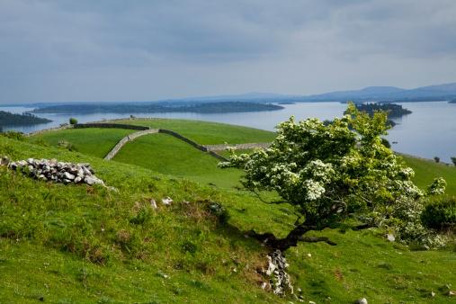 Republic of Ireland「Lough Corrib Near Cong」:スマホ壁紙(19)