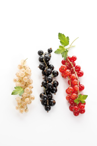 Black currant「Currants on white background, close-up」:スマホ壁紙(7)