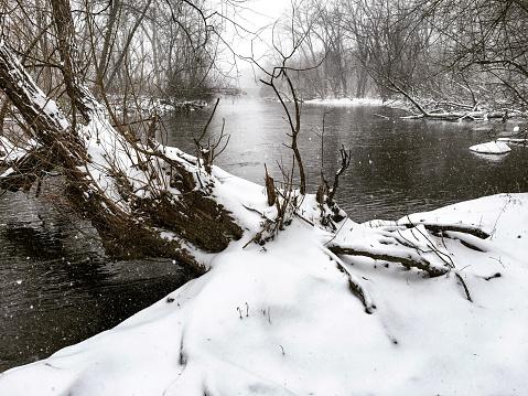 Sepia Toned「Snow Falling on Tree Trunk Along Milwaukee River in Estabrook Park」:スマホ壁紙(14)