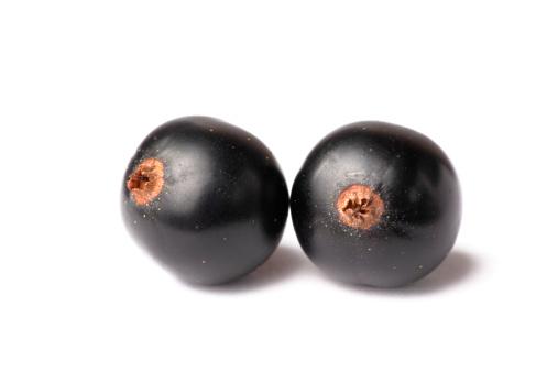 Black currant「Black Currant Isolated On White」:スマホ壁紙(6)