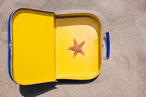 Starfish in suitcase:スマホ壁紙(壁紙.com)