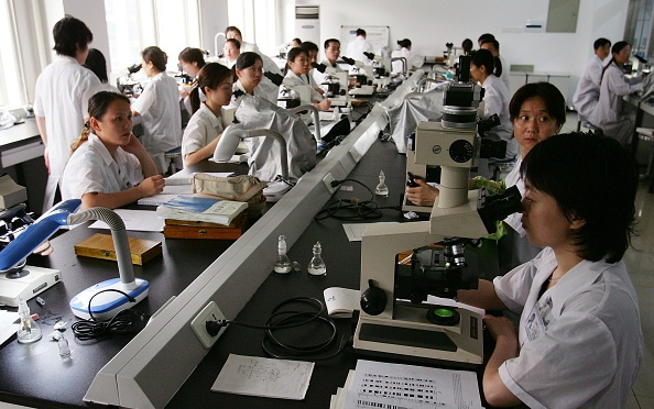 中国文化「Chinese Scientists Work At National Lab Of Medical Genetics Of China」:写真・画像(11)[壁紙.com]