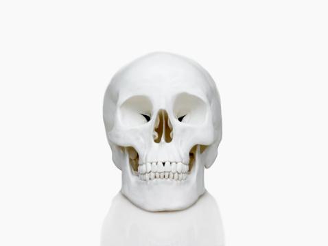 ドクロ「人の頭蓋骨」:スマホ壁紙(18)