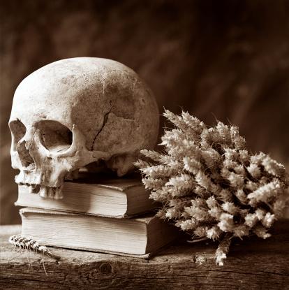 Indigenous Culture「Human Skull Resting on Books, Sepia Toned」:スマホ壁紙(0)
