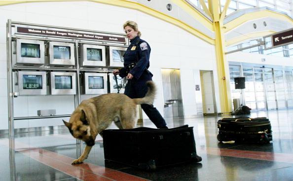 Security「Reagan National Airport Prepares For TSA's Secutiry Deadline」:写真・画像(8)[壁紙.com]
