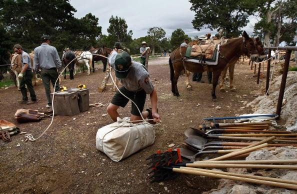 Furlough「Grand Canyon N.P. Gets Stimulus Dollars To Re-Build Trails」:写真・画像(7)[壁紙.com]