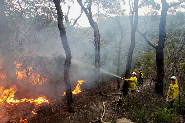 Risk「NSW National Parks and Wildlife Service Carries Out Hazard Reduction Burns Ahead Of Bushfire Season」:写真・画像(6)[壁紙.com]