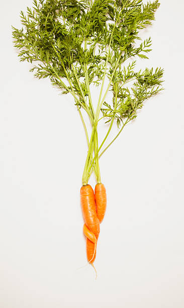 Intertwined carrots on a white background:スマホ壁紙(壁紙.com)