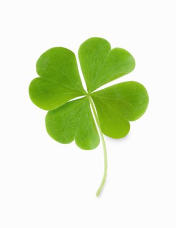 Luck「Four leaf clover」:スマホ壁紙(10)