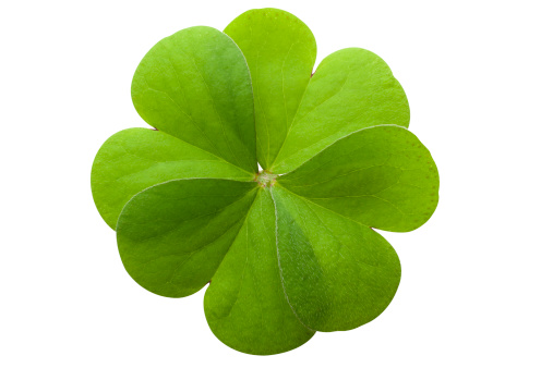 Clover Leaf Shape「Four leaf clover」:スマホ壁紙(7)