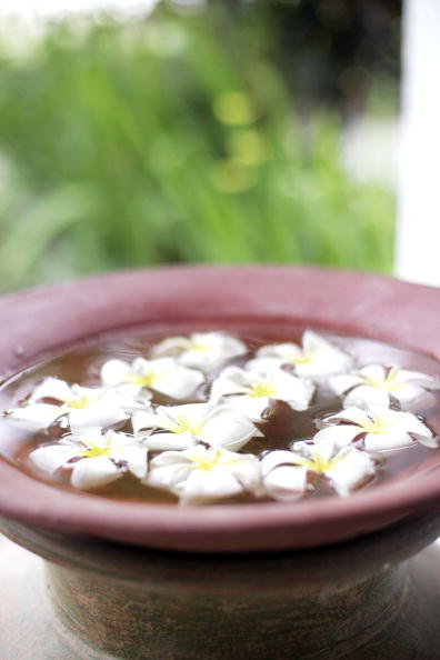 Frangipani「Tropical Spas Lure Tourists Back To Bali」:写真・画像(9)[壁紙.com]