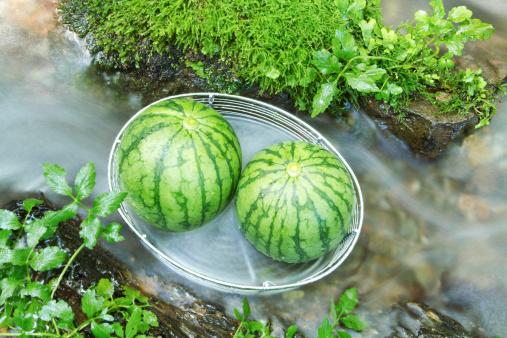 メロン「Two Watermelons」:スマホ壁紙(19)