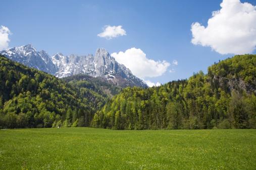 Wilder Kaiser「Austria, Tyrol, Scenic view of meadow and mountains, Wilder Kaiser, Kaisergebirge mountains」:スマホ壁紙(18)