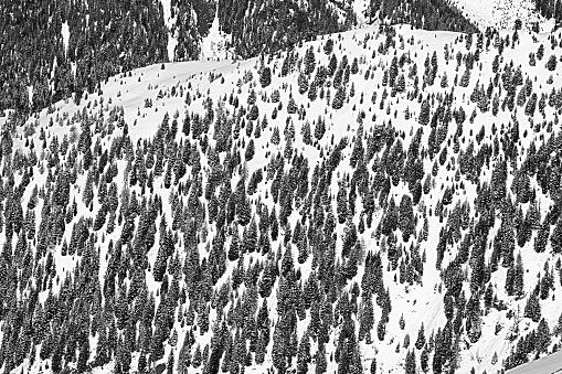 Ischgl「Austria, Tyrol, Ischgl, trees in winter landscape」:スマホ壁紙(16)