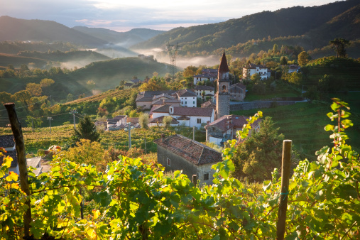Prosecco「Rolle Village & Prosecco Vineyards, Veneto, Italy」:スマホ壁紙(9)