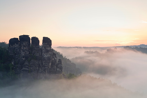 Saxony「Germany, Saxony, view to Gansfels at Elbe Sandstone Mountains in the morning mist」:スマホ壁紙(4)