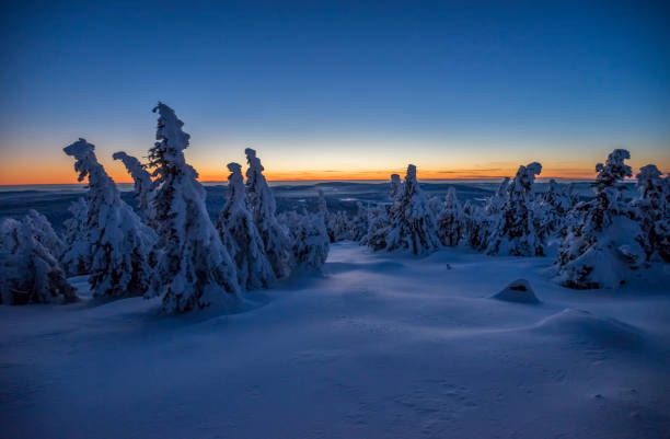 Germany, Saxony-Anhalt, Harz National Park Brocken in winter in the evening:スマホ壁紙(壁紙.com)