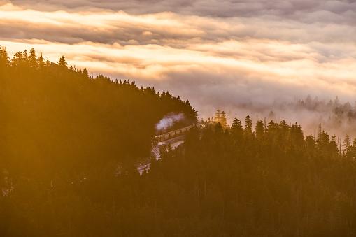 Harz National Park「Germany, Saxony-Anhalt, Harz National Park, Harz Narrow Gauge Railway in winter」:スマホ壁紙(13)