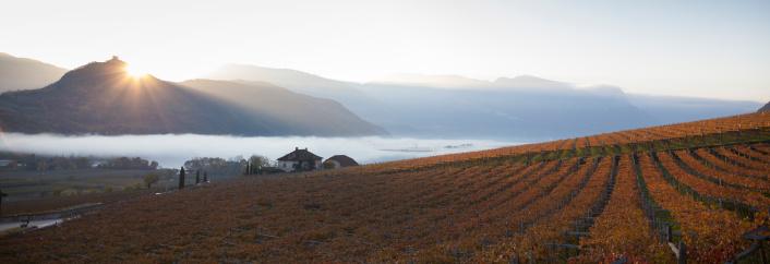 Alto Adige - Italy「Lake Caldaro at sunrise in autumn」:スマホ壁紙(15)