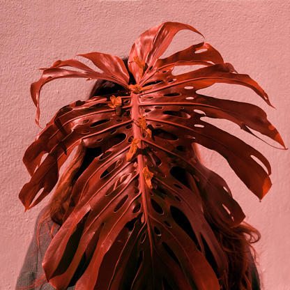 Obscured Face「Woman behind red monstera leaf」:スマホ壁紙(11)