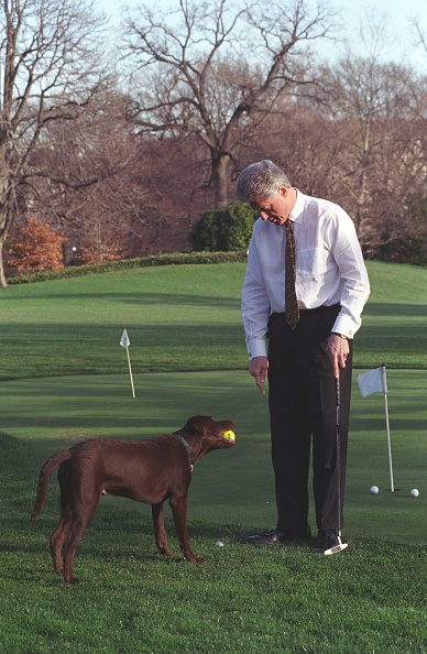Putting Green「Clinton And Buddy Putting」:写真・画像(4)[壁紙.com]