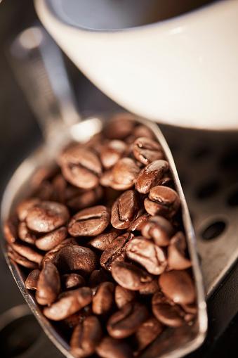 コーヒー「espresso beans」:スマホ壁紙(15)