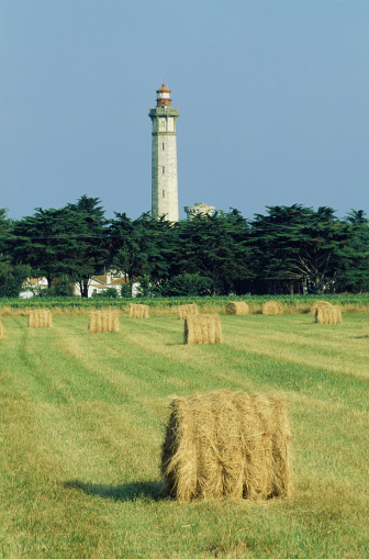 Nouvelle-Aquitaine「Farmland by lighthouse, Charente-Maritime, France」:スマホ壁紙(3)