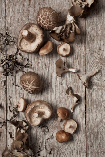 Oyster Mushroom「Whole fresh shitaki and oyster mushrooms on wood」:スマホ壁紙(16)