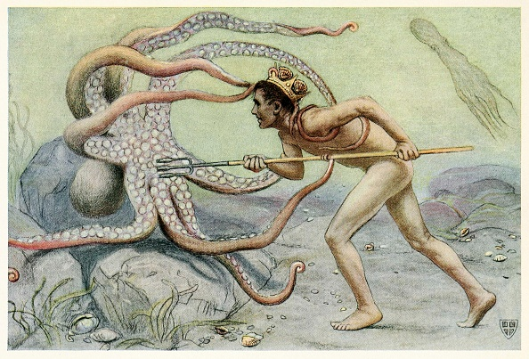 Octopus「He Was Very Brave And Strong」:写真・画像(10)[壁紙.com]
