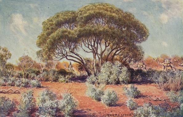 Journey「A Fertile Spot In Central Australia」:写真・画像(14)[壁紙.com]