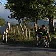 Arenal Volcano壁紙の画像(壁紙.com)
