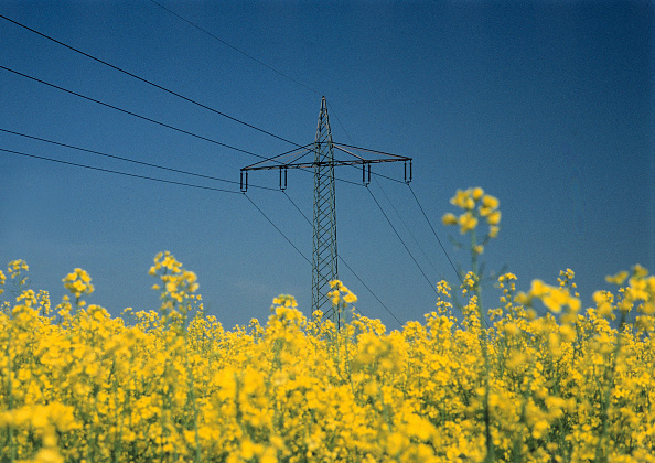 Electricity「Pylon and power transmission lines over a field of rape」:写真・画像(19)[壁紙.com]
