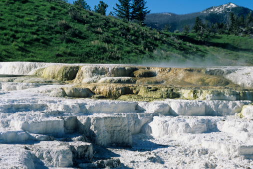 Mammoth Hot Springs「Mammoth Hot Springs, Yellowstone National Park, Wyoming, USA」:スマホ壁紙(1)