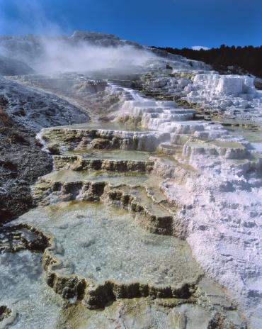 Mammoth Hot Springs「Mammoth Hot Springs at Yellowstone National Park」:スマホ壁紙(7)