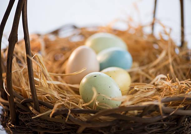 Dyed Easter eggs in a basket:スマホ壁紙(壁紙.com)