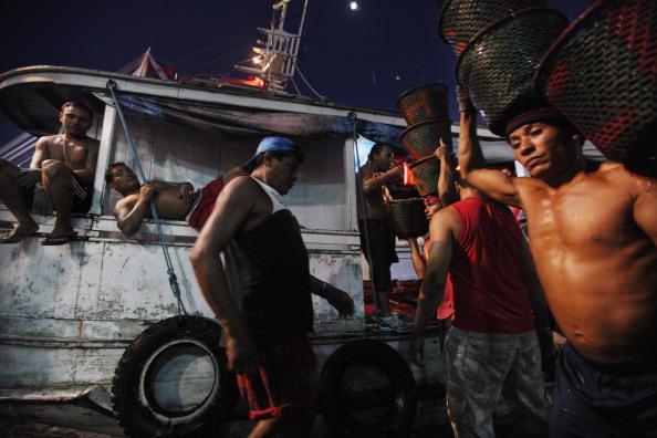 Dawn「Brazil Faces Environmental Challenges in Amazon Ahead of Rio+20 Earth Summit」:写真・画像(8)[壁紙.com]