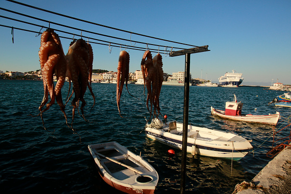 Octopus「Tourist Trade On Lesbos Plunges」:写真・画像(13)[壁紙.com]