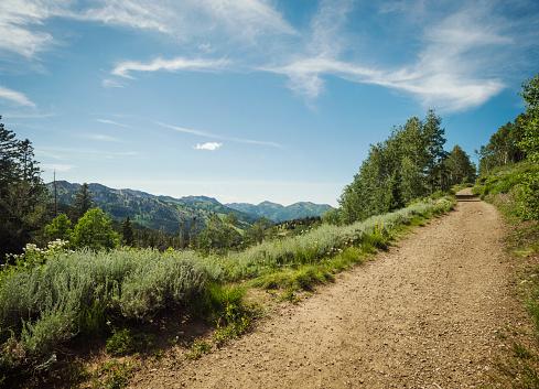Dirt Road「USA, Utah, Salt Lake City, Dirt road in mountains」:スマホ壁紙(14)