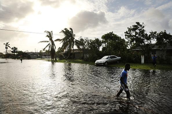 Naples - Florida「Powerful Hurricane Irma Slams Into Florida」:写真・画像(5)[壁紙.com]