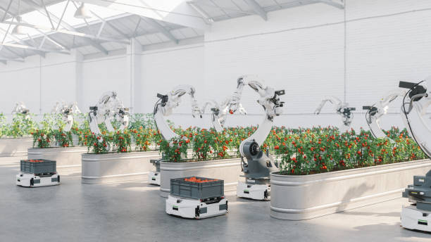 Automated Agriculture With Robots:スマホ壁紙(壁紙.com)