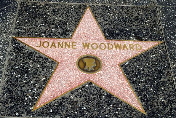 Walk Of Fame「Celebrity Stars In Hollywood」:写真・画像(9)[壁紙.com]