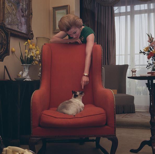 Armchair「Joan Fontaine」:写真・画像(7)[壁紙.com]