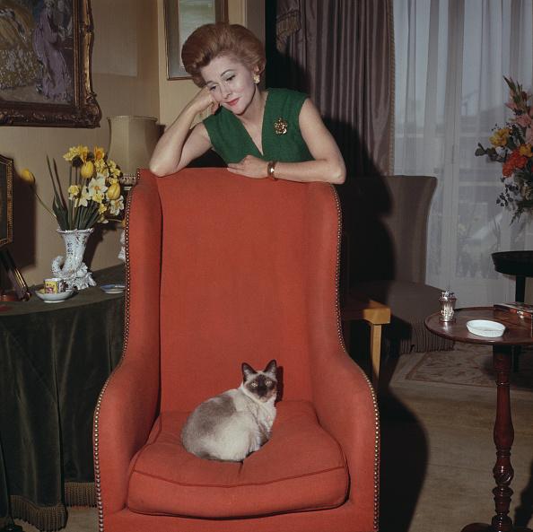 Armchair「Joan Fontaine」:写真・画像(9)[壁紙.com]