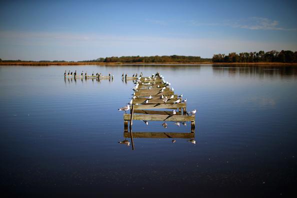 Run-Down「Rising Sea Levels Threatens Coast Of Maryland's Hoopers Island」:写真・画像(13)[壁紙.com]