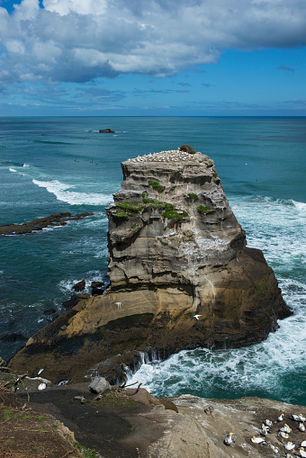 Wave「Gannet Rock at Otakamiro Point, Muriwai Beach.」:スマホ壁紙(16)
