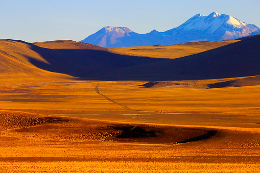 Bolivian Andes「Country dirt mountain road to Chilean Andes altiplano at sunrise and volcano, Idyllic Atacama Desert, snowcapped Volcanic steppe puna landscape panorama – Antofagasta region, Chilean Andes, Chile, Bolívia and Argentina border」:スマホ壁紙(7)