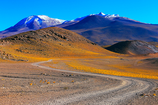 Bolivian Andes「Country dirt road to Chilean Andes altiplano at sunrise and volcano, Idyllic Atacama Desert, snowcapped Volcanic steppe puna landscape panorama – Antofagasta region, Chilean Andes, Chile, Bolívia and Argentina border」:スマホ壁紙(10)