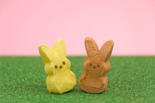 イースター「Candy marshmallow easter bunny candy sitting in grass, close-up」:スマホ壁紙(11)